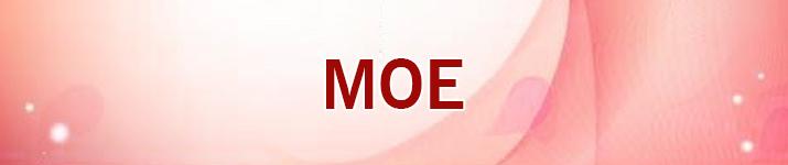 MOE RMT
